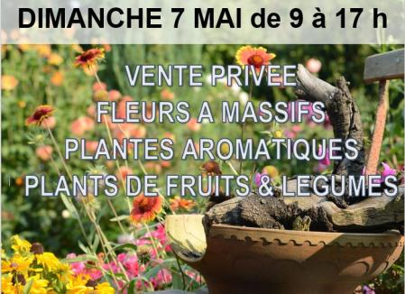 Vente_de_fleurs
